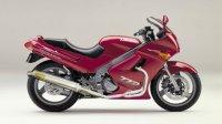 KAWASAKI ZZ-R250 TRエキゾーストシステム ステンレスサイレンサー Φ100X500