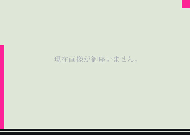 画像1: KAWASAKI GPZ900R TRエキゾーストシステム ステンレスサイレンサー Φ100X400